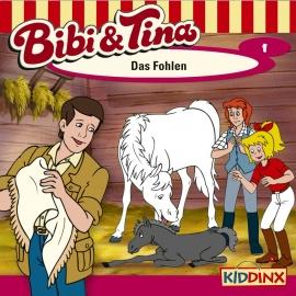 Bibi Und Tina Folge 1